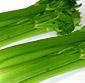 Picture of Celery Stalk